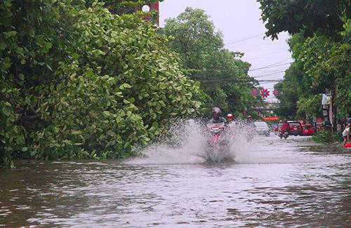 Bảo hiểm giông bão lũ