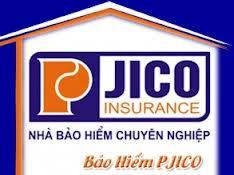 lo go công ty cổ phần bảo hiểm pjico,bảo hiểm pjico,giới thiệu bảo hiểm pjico